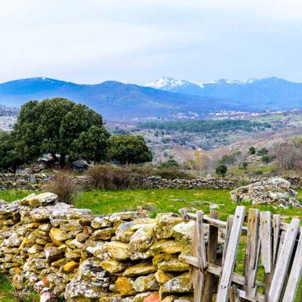 رحلة في جبال مدريد